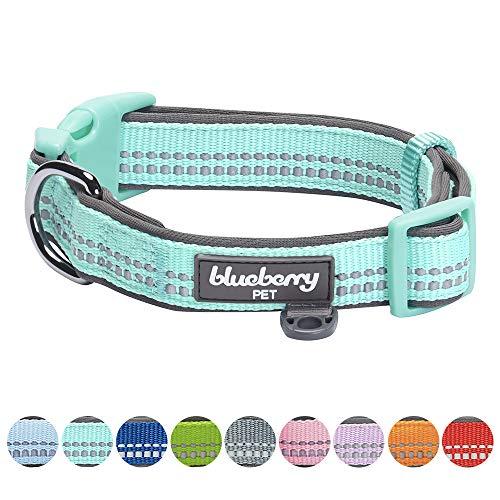 Blueberry Pet 9 Colors Soft & Safe 3M Reflective Neoprene Padded Adjustable Dog Collar - Mint Blue Pastel Color, Small, Neck 12-16