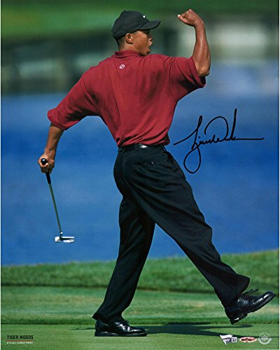 09246a9a107 Tiger Woods Autographed 16