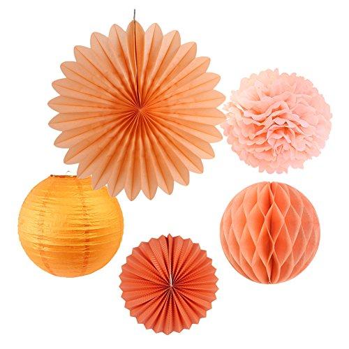 SUNBEAUTY Tissue Paper Pom Poms Paper Fans Honeycomb Balls Kit Wedding Birthday Baby Shower Valentine Decoration 5 Pieces (Peach)