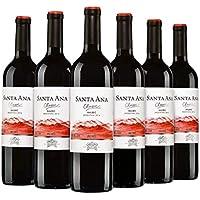 6 Pack Vino Tinto Santa Ana Malbec