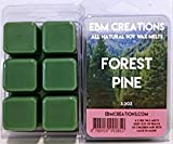 Forest Pine - Scented All Natural Soy Wax Melts - 6 Cube Clamshell 3.2oz Highly Scented!