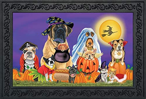 Briarwood Lane Trick or Treat Dogs Halloween Doormat Cats Jack O Lantern Indoor Outdoor 18 x30