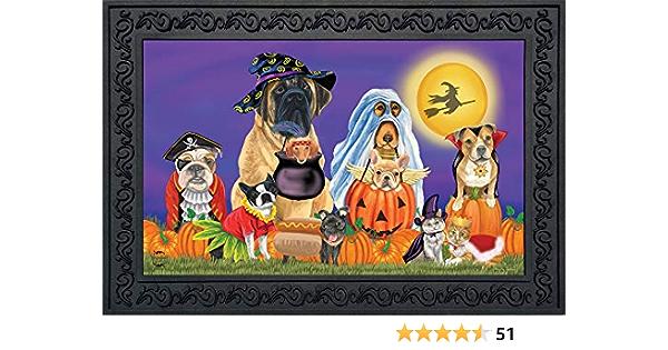 """Outdoor 18/"""" x 30/"""" Briarwood Lane Spoiled Dogs Fall Doormat Pets Humor Indoor"""