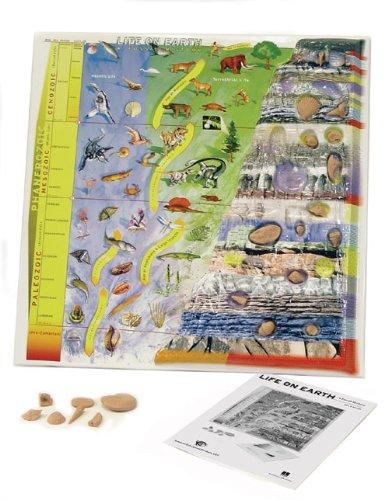 Vinyl Life On Earth A Fossil History 3D Model, 24-1/2