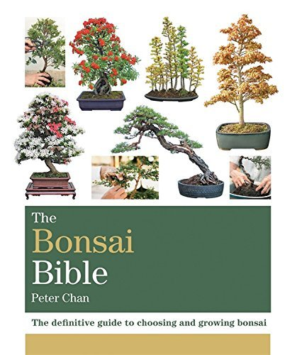 The Bonsai Bible: The definitive guide to choosing and growing bonsai (Octopus Bible Series) by Peter Chan (1-Sep-2014) Paperback