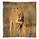 How Big Is a King Size Bed Super Soft Throw Blanket Custom Design Cozy Fleece Blanket,Safari Decor,Mom Lioness and Young Lion Kings in South African Nature Big Cats at Wilderness Safari Photo,Cream,Perfect for Couch Sofa or Bed