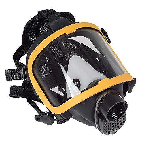 Constant Flow Airline Supplied Fresh Air Respirator System Full Face Gas Mask,80W Blower,20m Air hose
