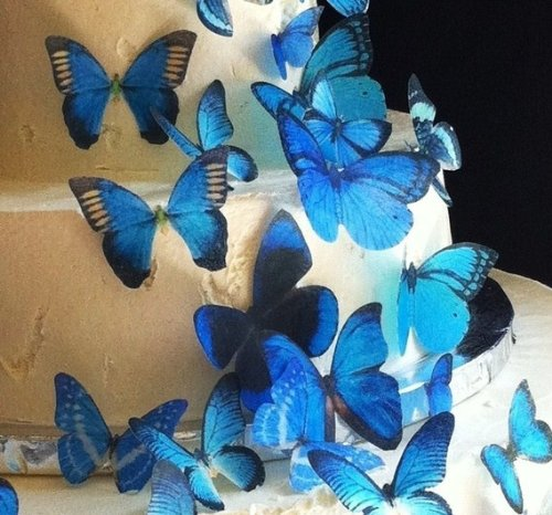 Edible Butterflies © - Assorted Set of 30 Blue- Cake Decorations, Cupcake Topper