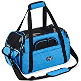 PETCOMER Soft-Sided Pet Carrier for Dogs Cats Travel Bag Tote Airline Approved Under Seat Review