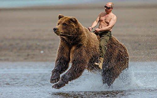 Innerwallz Vladimir Putin Bears Wall Art Pop Art Poster Art Prints Rare Posters Posters Prints Amazon Com