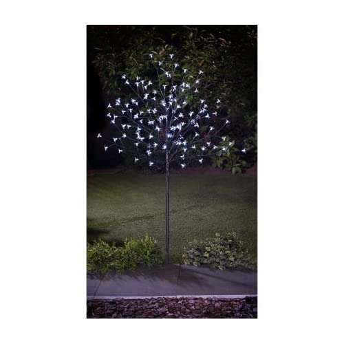 Solar Trees: Amazon.co.uk