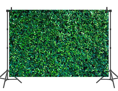 Sensfun Nature Green Leaves Wall Photography Backdrop Grass Lawn Picture Background Spring Birthday Party Decor Outdoor Theme Newborn Baby Bridal Shower Wedding Photo Studio Booth Props 7x5ft]()
