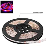Wiring Type DC12V 60W LED Plant Growth Light Strip, Red and Blue Light