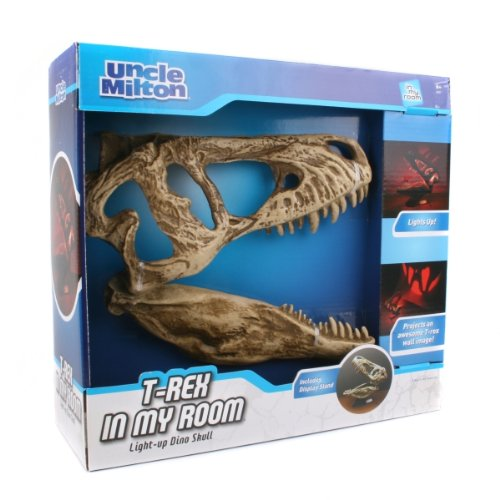 - T. Rex In My Room Home Décor Tabletop Light