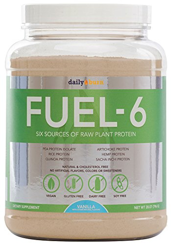 DailyBurn-Fuel-6-Vegan-Protein-Powder-Made-from-6-Plant-Protein-Sources-30-oz-bottle