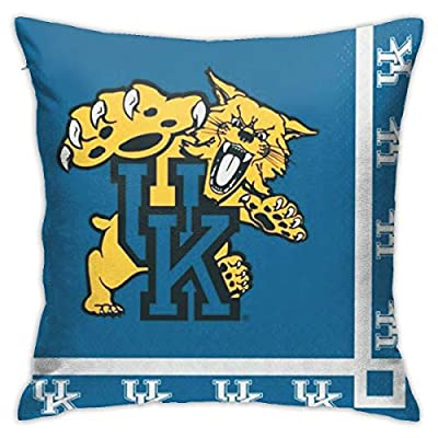 Luyhusgfh Kentucky- Wildcats Bedroom/Living Room/Room/Sofa Clean Pillowslips 18inch18inch