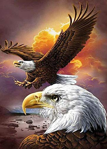 (DIY Handwork Store 5D Full Round Diamond Painting Kits by Numbers DIY Mosaic Winged Eagle Animal Cross Stitch Velvet Canvas Handmade Embroidery Art Craft Gift Home Decoration(17.72''x 23.62''))