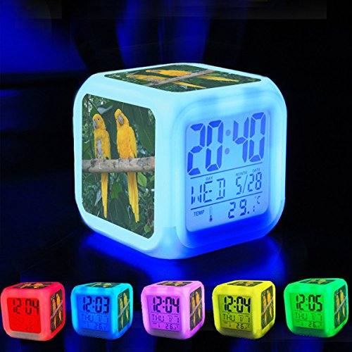 Winter Aviary - Alarm Clock 7 LED Color Changing Wake Up Bedroom with Data and Temperature Display (Changable Color) Customize the pattern-237.Guaruba guarouba -National Aviary
