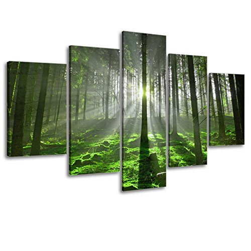 5 Panel Forest Wall Art for Office Decor, SZ Fantastic Spring Morning Sunrise Picture Canvas Prints of Nice Sunshine Peeking Through Rainforest (Waterproof Artwork, 1\