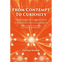 From Contempt to Curiosity: Creating the Conditions for Groups to Collaborate Using Clean Language and Systemic…