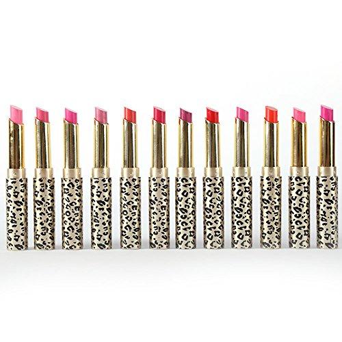 PanDaDa 12Pcs/set Leopard Long Lasting Lipstick Makeup Lip Gloss Lip Rouge Cosmetics
