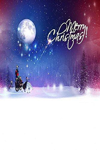 GladsBuy Christmas Night 8' x 12' Digital Printed Photography Backdrop Christmas Theme Background YHA-466 by GladsBuy