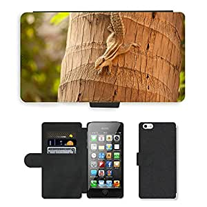 Super Stella Cell Phone Card Slot PU Leather Wallet Case // M00105936 Squirrel Climbing Down Coconut Tree // Apple iPhone 5 5S 5G
