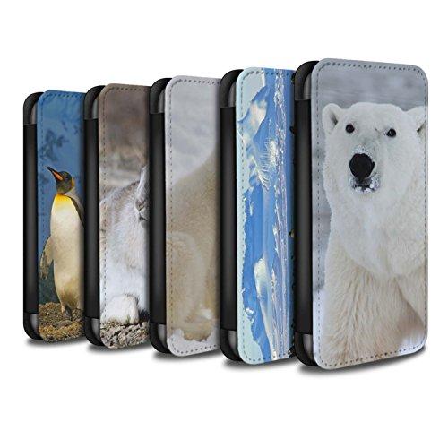 Stuff4 Coque/Etui/Housse Cuir PU Case/Cover pour Apple iPhone 7 Plus / Pack 6pcs Design / Arctique Animaux Collection