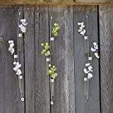 Chive - Hanging and Wall Mount Flower Bud Vase, Great for Wall Art