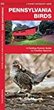 Pennsylvania Birds: A Folding Pocket Guide to Familiar Species (A Pocket Naturalist Guide)