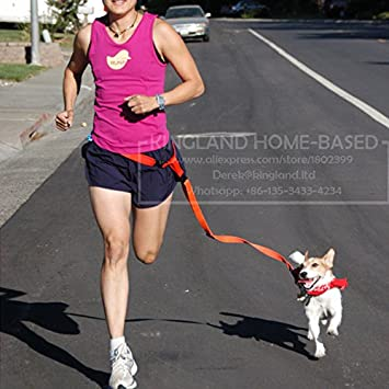 d451af4a663 Buy Veena Black Adjustable New Waist Pet Dog Leash Running Jogging ...