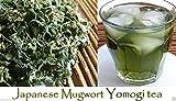Japanese Mugwort Seeds Yomogi - Artemisia Princeps 2000 Heirloom Seeds