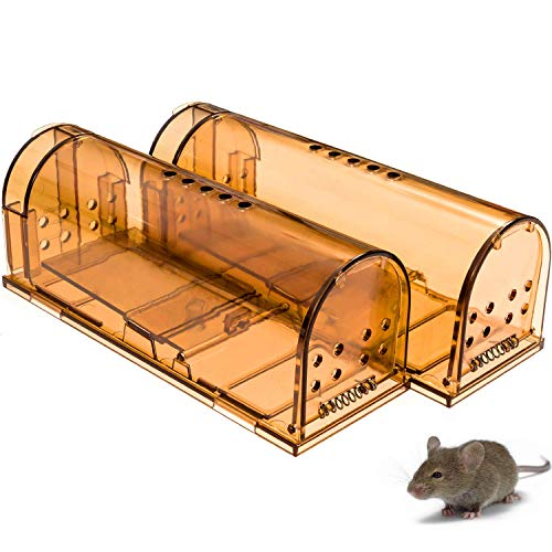 CaptSure Original Humane Mouse Traps, Easy to Set, Kids/Pets Safe, Reusable for Indoor/Outdoor use, for Small Rodent/Voles/Hamsters/Moles Catcher That Works. 2 Pack (Small) ()