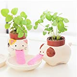 Zehui Cute Self Watering Animal Planter Drinking Animal Tongue Cultivation Mini Ceramic Plant Pots Panda-Wild Strawberry