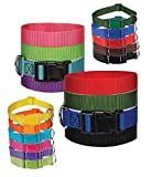DOG COLLAR BULK PACKS Nylon Litter Band Puppy Rescue Shelter Pick Size & Amount(Small - 10 to 16 Inch 50 Collars)