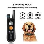 Dog Training Collar - Rechargeable Dog Shock Collar w/3 Training Modes, Beep, Vibration and Shock, 100% Waterproof Training Collar, Up to 1000Ft Remote Range, 0~99 Shock Levels Dog Training Set 9