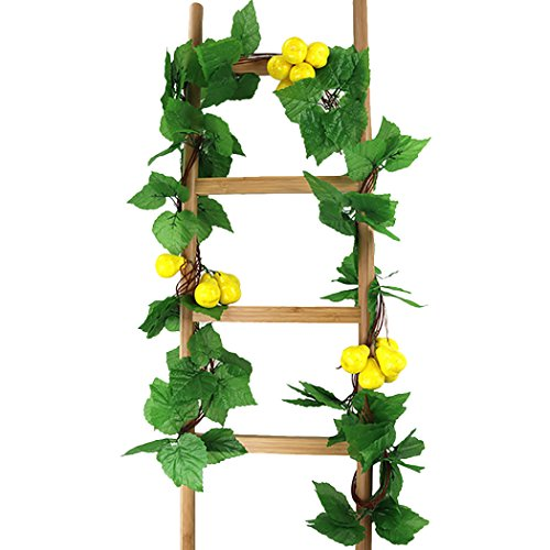 Outgeek 5 Strings Artificial Vine Decorative Artificial Fruits Vegetables Fake Plant for Garden Yard Decor from Outgeek