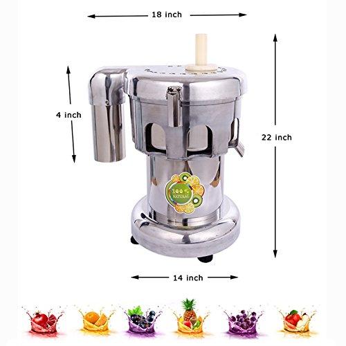Commercial Fruit and Vegetable Juicer Extractor Juicer 110v 750w