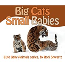 Toddler's book: Big Cats, Small Babies (Cute Baby Animals Book 1)