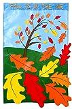 Cheap Flag, Gar, Fall is in the Air