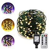 ER CHEN Dual-Color LED String Lights(Multicolored/warm white), 66FT 200LEDs Adapter Powered Color Changing Green Copper Wire Dimmable Decorative Lights with 8 Mode Remote Control Timer for indoor and outdoor party Christmas wedding