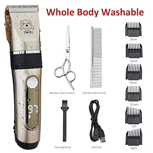 IWEEL Dog Clippers, 2-Speed Professional Rechargeable Cordless Cat Shaver and Low Noise Water Proof Electric Dog Trimmer Pet Grooming Kit Animal Hair Clippers Tool with Scissors Combs (Best Cat Grooming Clippers)