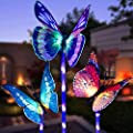 Garden Solar Lights Outdoor, 3 Pack Solar Stake Lights Multi-Color Changing LED Butterfly, Fiber Optic Butterfly Decorative Lights with a Purple LED Light Stake