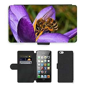 Super Stella Cell Phone Card Slot PU Leather Wallet Case // M00103858 Crocus Flower Spring Purple Close // Apple iPhone 5 5S 5G