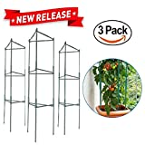 EasyGo Products EGP-GARD-020 Easygo Tomato Cages Stakes-Vegetable Trellis-3 Pack Plant