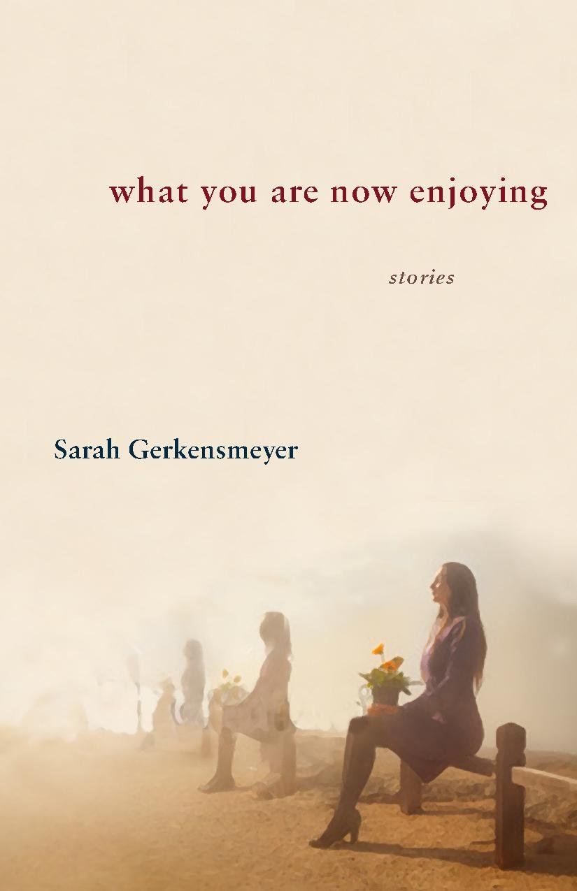 What You Are Now Enjoying: Sarah Gerkensmeyer: 9781932870800: Amazon:  Books