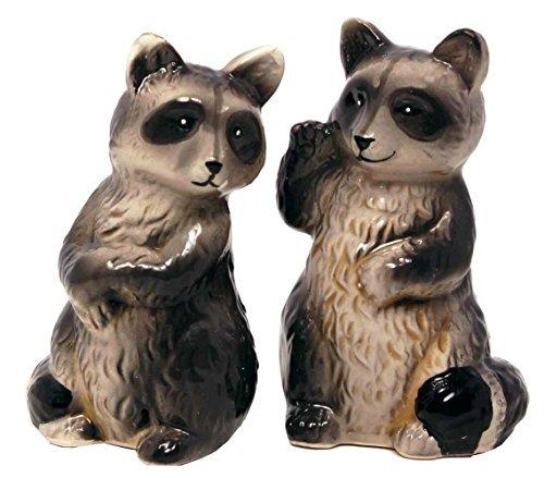 Salt & Pepper Shaker Set Raccoon
