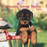 Airedale Terrier Puppies 2009 7X7 Mini Wall Calendar