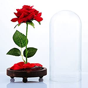"""VGIA """"Beauty and The Beast Artificial Silk Rose in Glass Dome on a Wooden Base Gift for Valentine's Day Anniversary Birthday 3"""