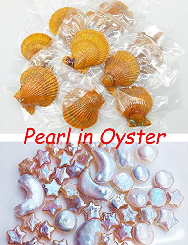 Dainashi 10 PCS Baroque Pearls Saltwater Red Oysters with Love Wish 8-12mm Star/Moon/Coin/Heart/Cross Pearl Inside Reborn Beads (10 pcs(Mixed -